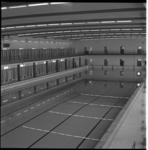 5282 Binnenbad van vijftig meter in Sportfondsenbad Zuid.