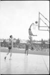 5398 Demonstratie basketbal door de Harlem Globe Trotters op een houten speelvloer in het Sparta-stadion.