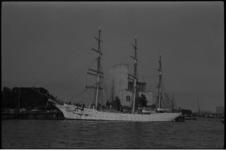 5439 Pools opleidingsschip 'Dar Pomorza' in de Parkhaven, gefotografeerd vanaf de Mullerpier.
