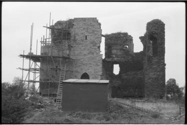 5630 Ruine Ravesteyn Heenvliet.
