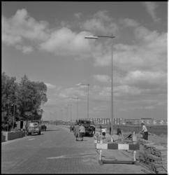 643 Wandelaars op de nieuwe weg naar Honderdentien Morgen.