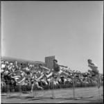 662-3 Hordenlopen (steeplechase) tijdens atletiekontmoeting Nederland-België op het sportpark De Vijfsluizen te Vlaardingen.