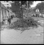 7458 Afgerukte takken van de bomen aan de Mauritsweg voor AMVJ-gebouw als gevolg van storm.