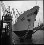 7696 Sinaasappelboot Lemoncore, met aan boord Israelische Jaffa's, ligt aan de kade in de Merwehaven bij Swarttouw.