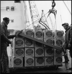 7697 Havenwerkers van Swarttouw lossen dozen met Israelische Jaffa's, aangekomen met schip de Lemoncore.