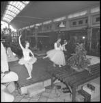 7851 Dansvoorstelling in Rivierahal bij opening plantententoonstelling.