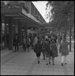 8125-1 Winkelend publiek op de Lijnbaan.