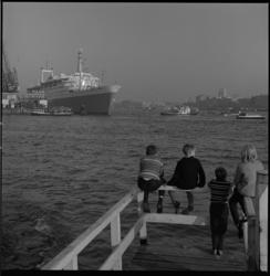 8293-1 Jongens zitten op een Katendrechtse steiger en kijken richting ss. Rotterdam, afgemeerd aan de Wilhelminakade.