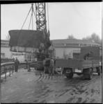 8443-1 Transport nijlpaard Tanja van Artis naar Diergaarde Blijdorp; aankomst in Blijdorp.