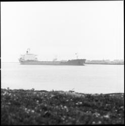 8469 Aankomst Zweedse bulkcarrier Nuolja op de Nieuwe Waterweg.