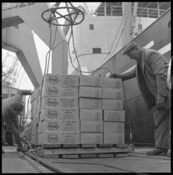 8632-1 Twee havenarbeiders bezig met de overslag van een pallet dozen.