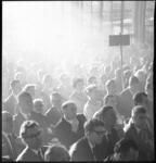8921-1 Leden van de Partij van de Arbeid op een congres in de Rivièrahal Diergaarde Blijdorp.