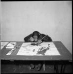 8934-2 Chimpansee schildert in Diergaarde Blijdorp.