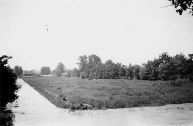 1976-2638 Gezicht op weilanden vanaf de 's Gravenweg.