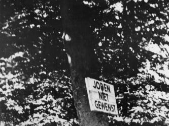 1968-282 Bord met tekst aan boom: Joden niet gewenst. Bij ingang van een park.