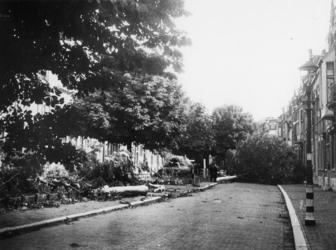 1977-3151 Het omhakken van bomen. De lantaarnpaal heeft witte banden om tijdens de verduistering beter zichtbaar te zijn.