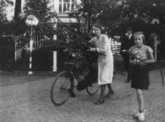 1977-3207 Een vrouw vervoert sprokkelhout met de fiets.