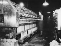1977-3785 Meisjes aan het werk in een spinnerij.
