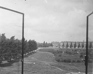 1981-126 De Pieter de Hoochweg gezien vanuit het huis Pieter de Hoochweg 108 (oostzijde). Op de achtergrond rechts de ...