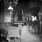 2005-317-51 Interieur van villa Welgelegen , het woonhuis van het echtpaar Van Hoboken-De Monchy aan de Parklaan 13 te ...