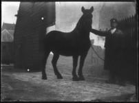 2007-2565-01 Een paard en zijn begeleider op de wagenplaats van de firma Tromp en Rueb, Azijnmakerij 'De Dubbele ...