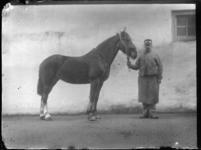 2007-2565-03 Een paard en zijn begeleider op de wagenplaats van de firma Tromp en Rueb, Azijnmakerij 'De Dubbele ...