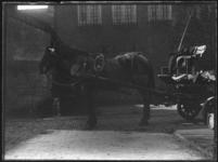 2007-2565-05 Een voor een wagen gespannen paard op de wagenplaats van de firma Tromp en Rueb, Azijnmakerij 'De Dubbele ...