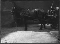 2007-2565-06 Een voor een wagen gespannen paard op de wagenplaats van de firma Tromp en Rueb, Azijnmakerij 'De Dubbele ...