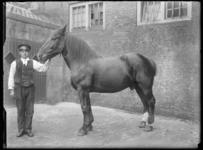 2007-2565-08 Een paard en zijn begeleider op de wagenplaats van de firma Tromp en Rueb, Azijnmakerij 'De Dubbele ...