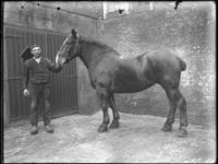 2007-2565-09 Een paard en zijn begeleider op de wagenplaats van de firma Tromp en Rueb, Azijnmakerij 'De Dubbele ...