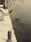 XXXIII-569-35-40 De Steigersgracht