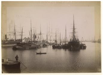 1990-1284 Veel zeeschepen in een haven, waarschijnlijk de Rijnhaven.