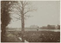 VIII-163 Zicht op de Waal met op de voorgrond een grazende koe in boerenlandschap.