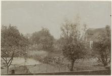 XXV-618-01 Boomgaard aan de Schulpweg bij de Waal, uit het oosten. Aan de rechterkant is een boerderij te zien.