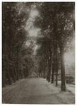 XXXI-174-04 Straatweg bij Blijdorp uit het noordoosten bij een wisselplaats van de paardentram.