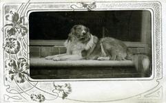 2000-1101-178 Serie van 237 fotokaarten, grotendeels vervaardigd door Louise Laboyrie, huishoudster (pastoorsmeid) bij ...