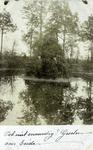 2000-1101-19 Serie van 237 fotokaarten, grotendeels vervaardigd door Louise Laboyrie, huishoudster (pastoorsmeid) bij ...
