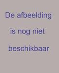 1981-258 Plattegrond van wijk N: Oud-IJsselmonde, Groot-IJsselmonde en Beverwaard, met de indeling van de wijk in ...