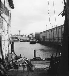 1968-3163 Gezicht op de Buizenwaal, uit het westen.