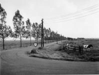 1972-1568 De Capelseweg ter hoogte van de Ommoordseweg.