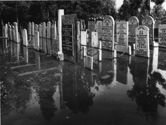 1976-2069 De door een dijkdoorbraak bij de Van Brienenoordbrug overstroomde Israëlitische Begraafplaats aan het Toepad.