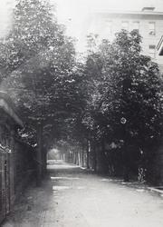 1976-294 Het laantje achter het Coolsingelziekenhuis, links de achterzijde van de Van Oldenbarneveltstraat.
