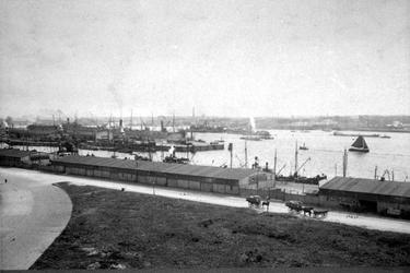 1980-3491 Ruigeplaatweg, loodsen van het stuwadoorsbedrijf Wambersie en zoon aan de noordzijde van de Schiehaven en de ...