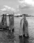 1986-1799 De Nieuwe Maas met o.a. de Nieuw Amsterdam liggend aan de Wilhelminakade, bij het gebouw van de Holland ...