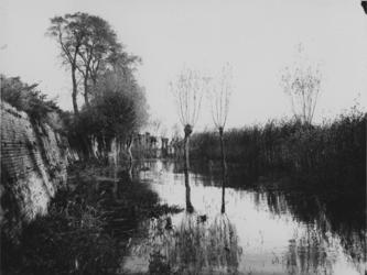 IX-2037 Gezicht tegen de Nesserdijk, met daarvoor gelegen Gors.