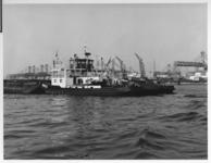 VII-529-49-04-02 Duwboot Hercules in de Waalhaven.