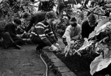 XII-124-06 Leerlingen van de lagere Tuinbouwschool, gevestigd in de Haverlandstraat, aan de Prinses Beatrixlaan aan het ...