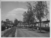XXV-744-05-1 Binnenterrein tussen de woningen van het tuindorp de Wielewaal.