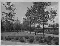 XXV-744-05-2 Binnenterrein en woningen in het tuindorp de Wielewaal.