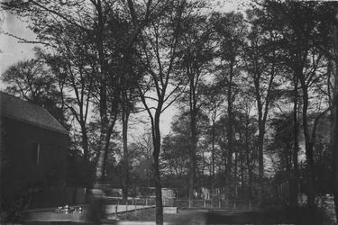 XXXI-284-00-01 Avenue Concordia op terrein in Kralingen met de stalhouderij van H.Buitendijk.